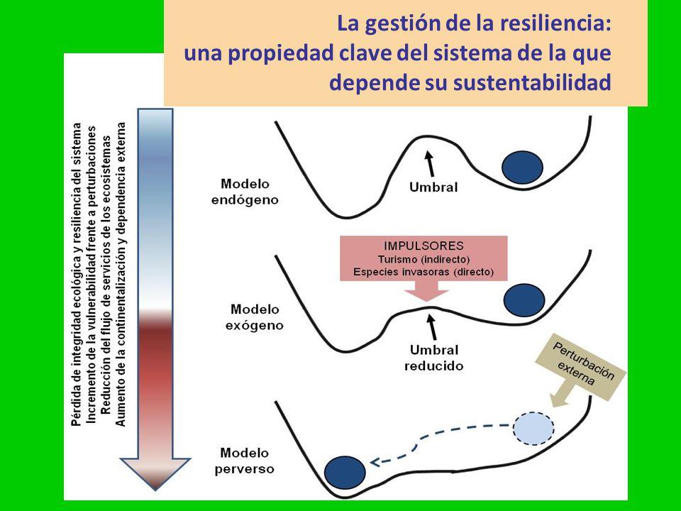 La gestión de la resiliencia: