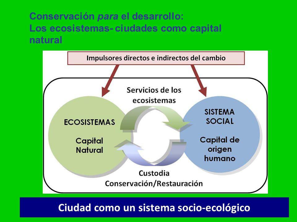 Ciudad como un sistema socio-ecológico