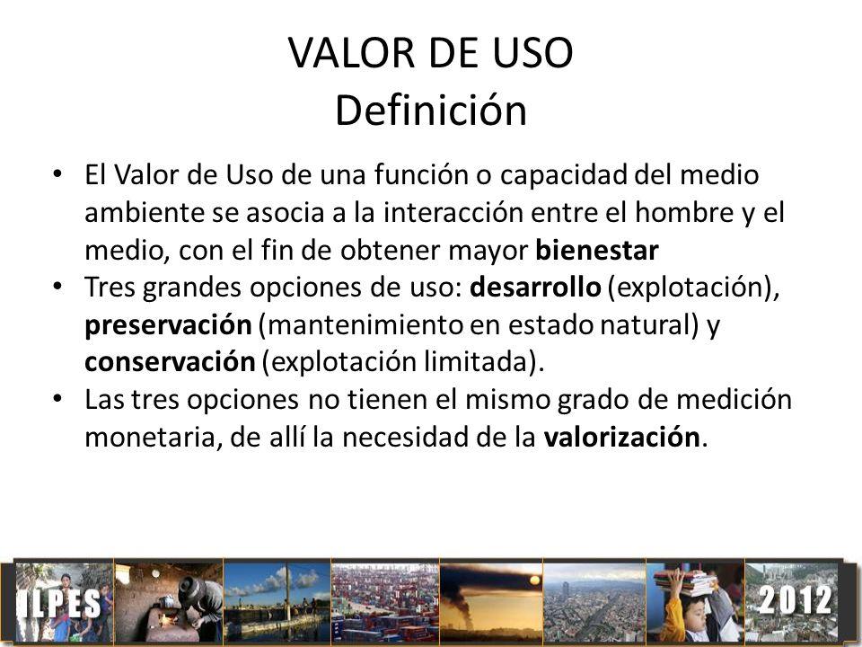 VALOR DE USO Definición