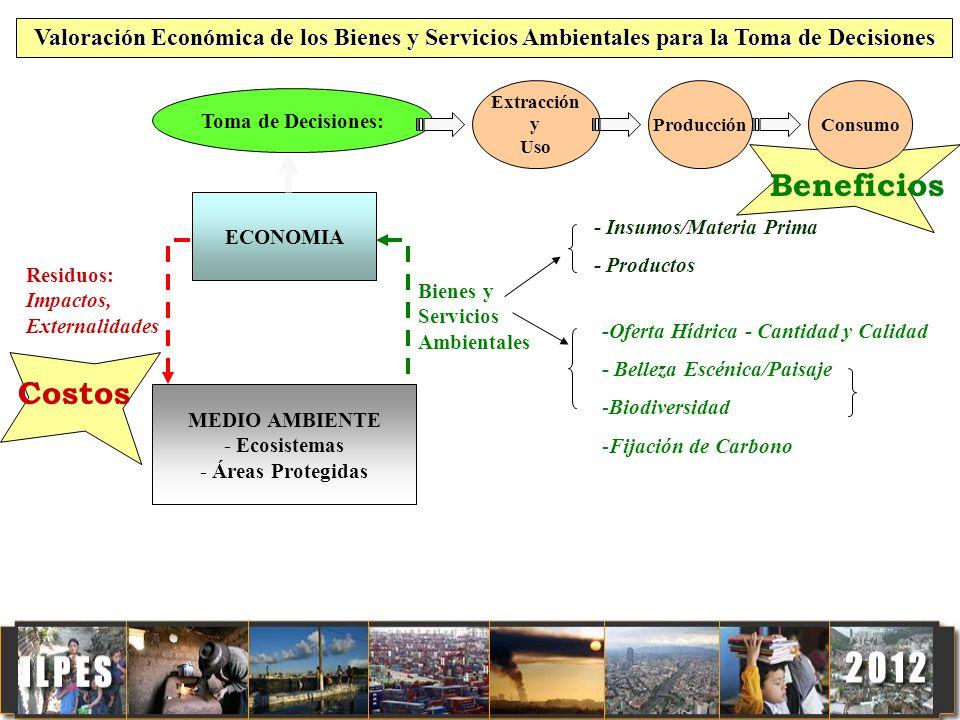 Valoración Económica de los Bienes y Servicios Ambientales para la Toma de Decisiones