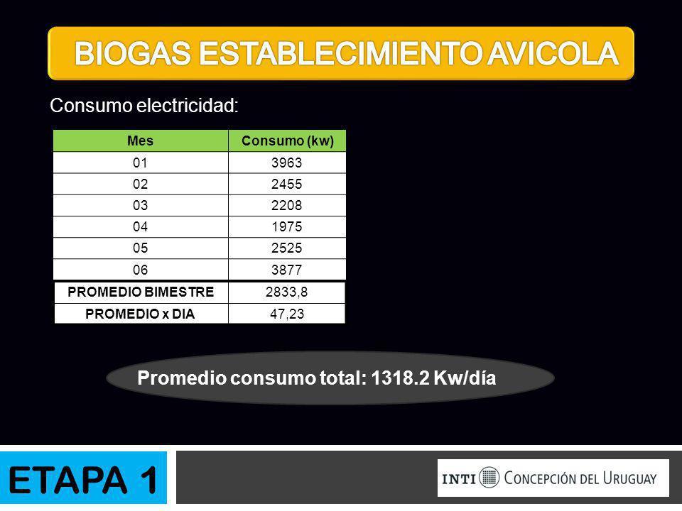 Promedio consumo total: 1318.2 Kw/día