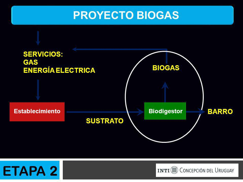 ETAPA 2 PROYECTO BIOGAS SERVICIOS: GAS ENERGÍA ELECTRICA BIOGAS BARRO