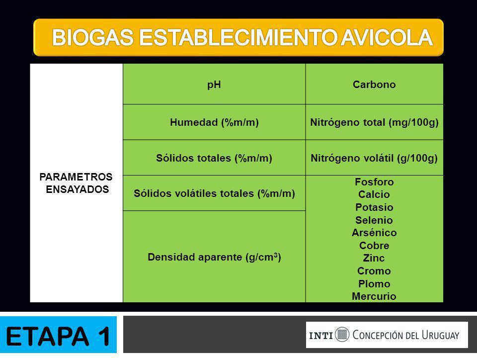ETAPA 1 BIOGAS ESTABLECIMIENTO AVICOLA PARAMETROS ENSAYADOS pH Carbono
