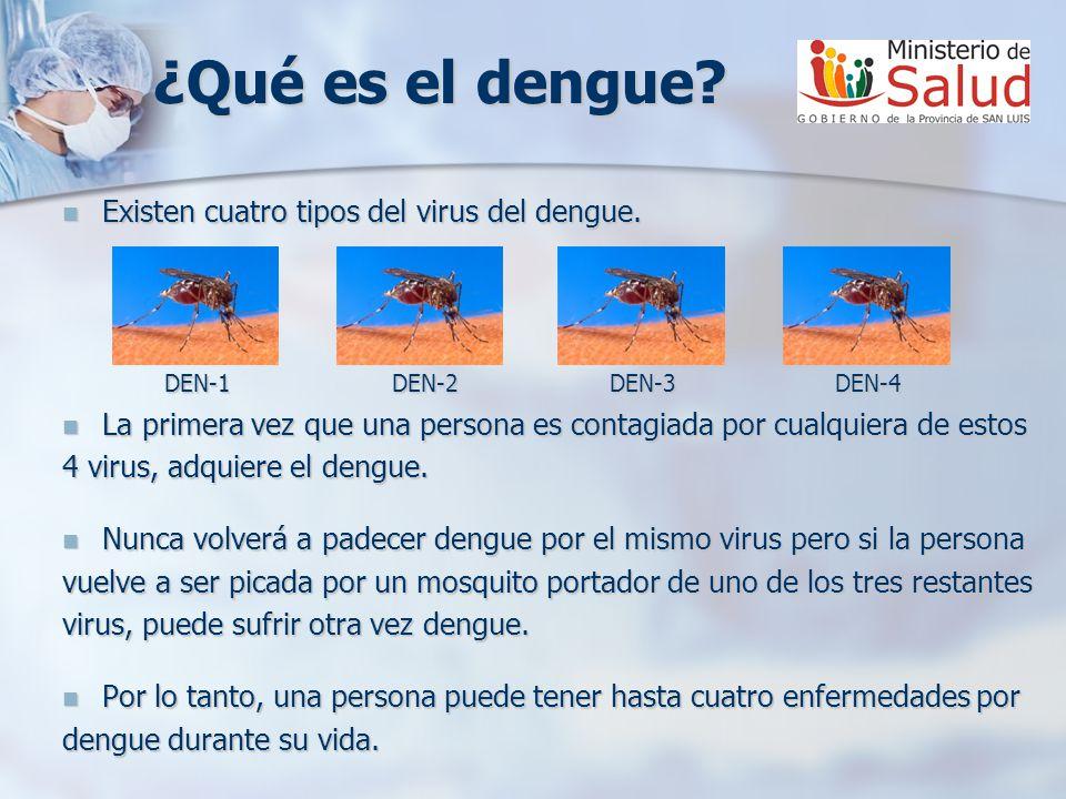 ¿Qué es el dengue Existen cuatro tipos del virus del dengue.