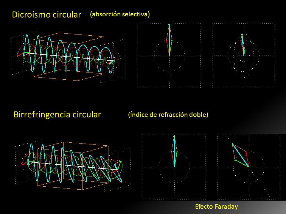 Birrefringencia circular