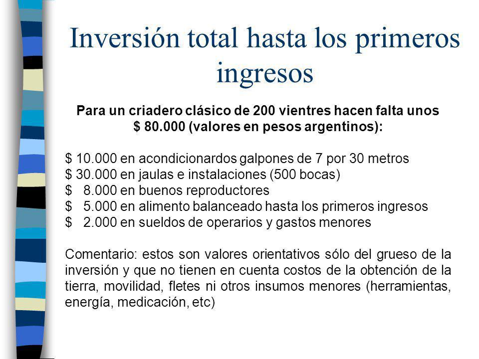 Inversión total hasta los primeros ingresos