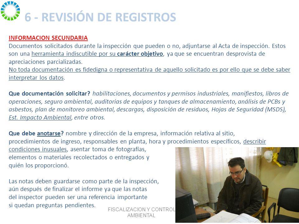 6 - REVISIÓN DE REGISTROS