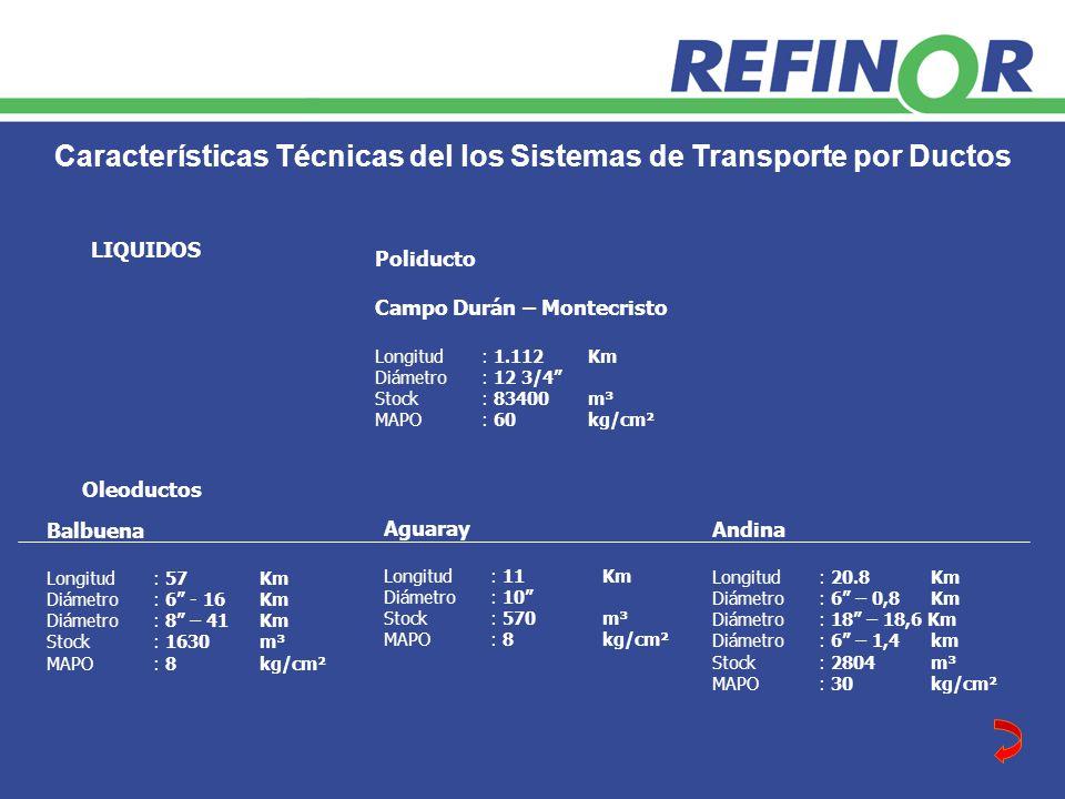 Características Técnicas del los Sistemas de Transporte por Ductos