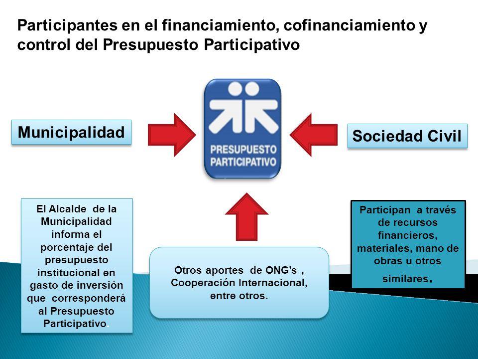 Otros aportes de ONG's , Cooperación Internacional, entre otros.