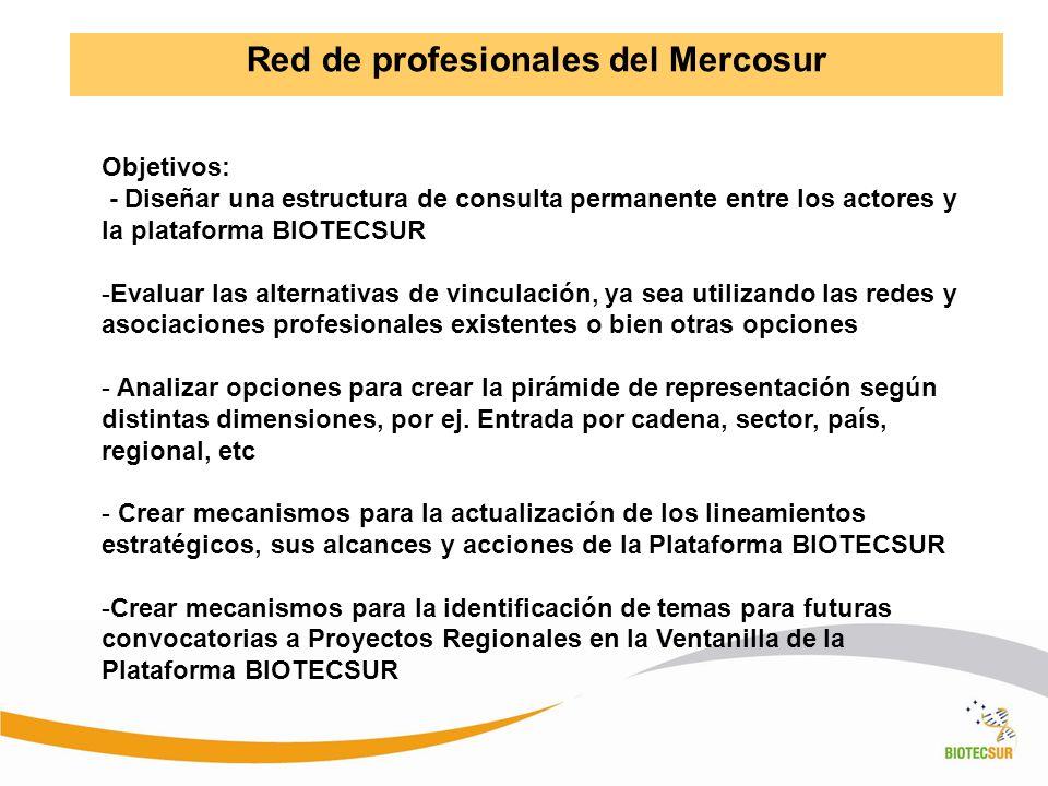 Red de profesionales del Mercosur