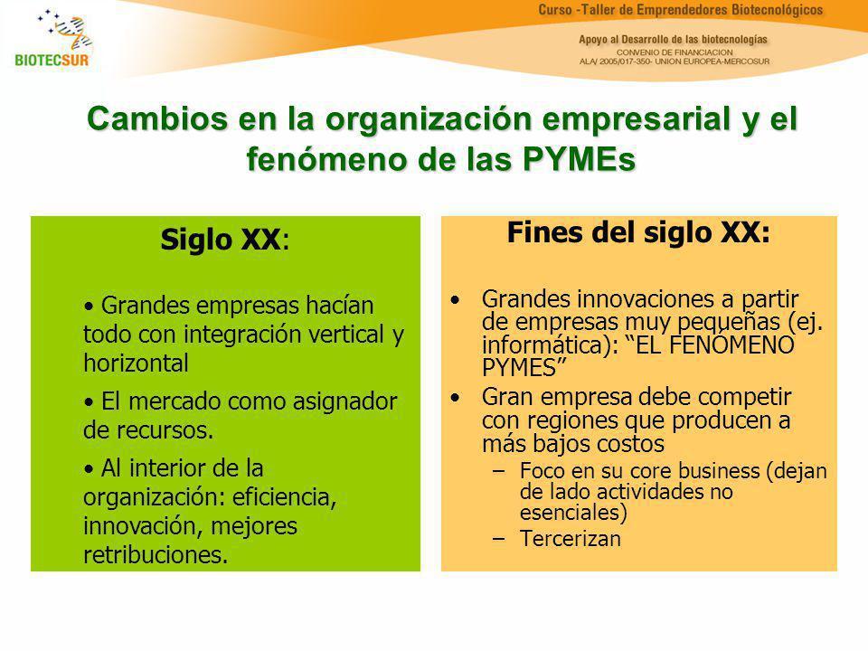 Cambios en la organización empresarial y el fenómeno de las PYMEs