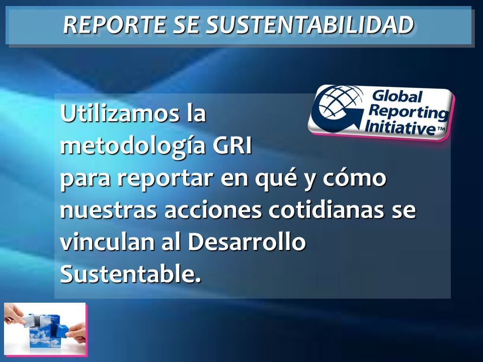 REPORTE SE SUSTENTABILIDAD