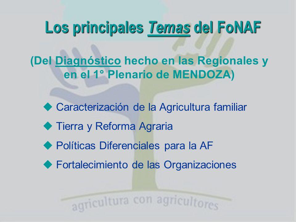 Los principales Temas del FoNAF