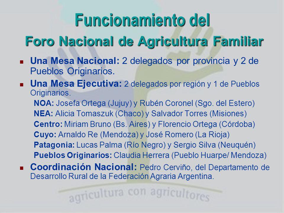 Funcionamiento del Foro Nacional de Agricultura Familiar