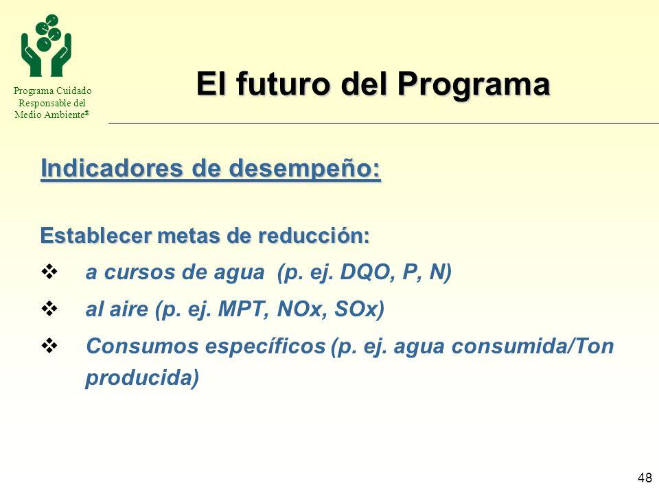 El futuro del Programa Indicadores de desempeño: