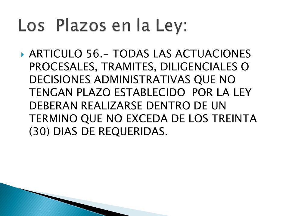 Los Plazos en la Ley: