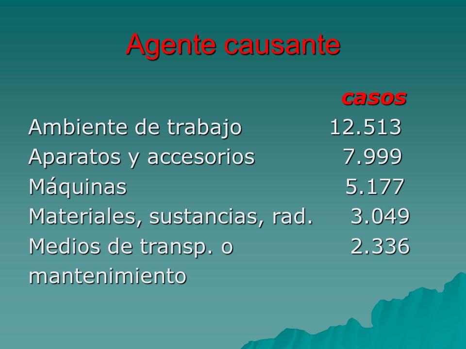 Agente causante casos Ambiente de trabajo 12.513