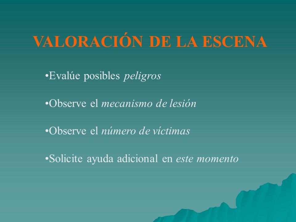 VALORACIÓN DE LA ESCENA