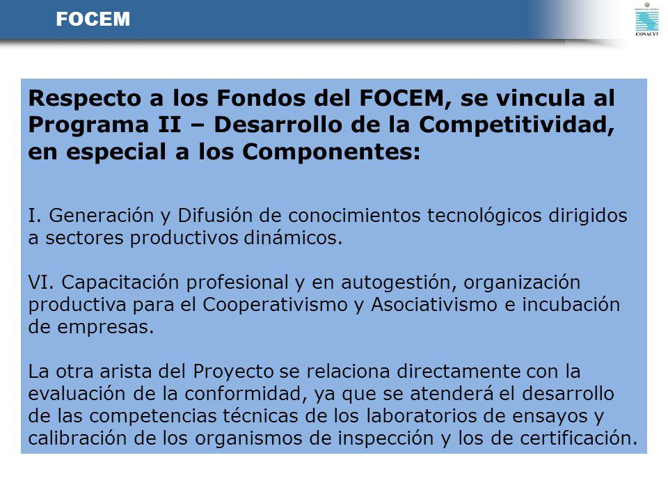 FOCEM Respecto a los Fondos del FOCEM, se vincula al Programa II – Desarrollo de la Competitividad, en especial a los Componentes: