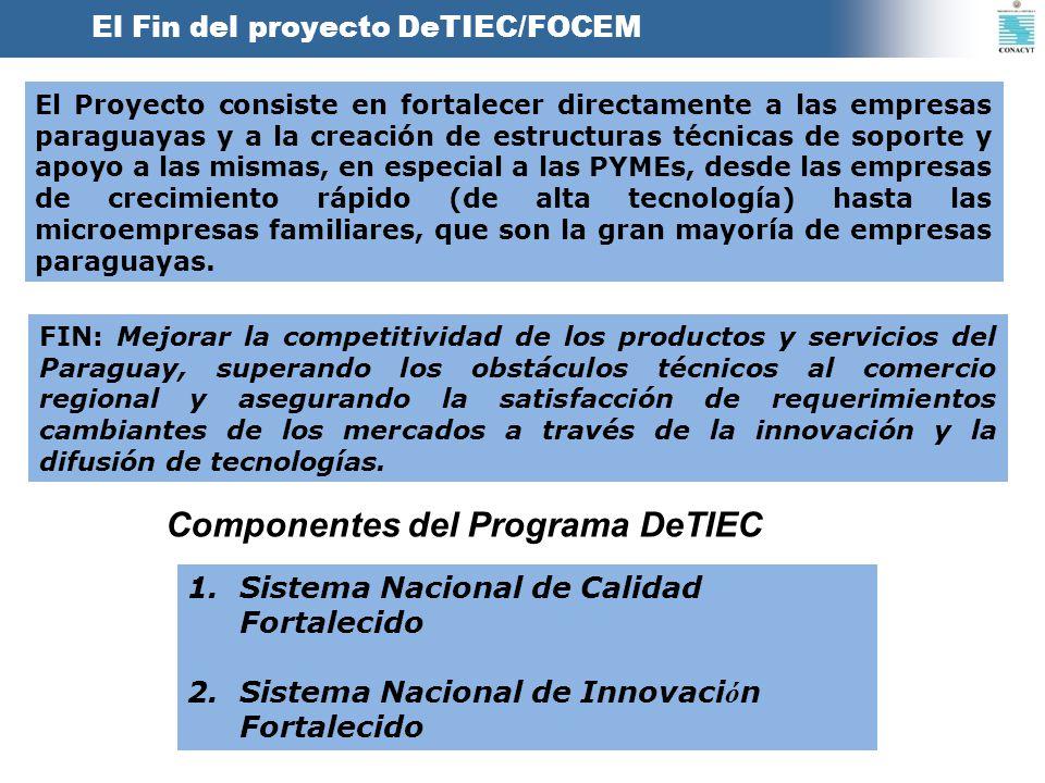 Componentes del Programa DeTIEC