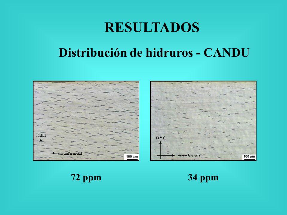 Distribución de hidruros - CANDU