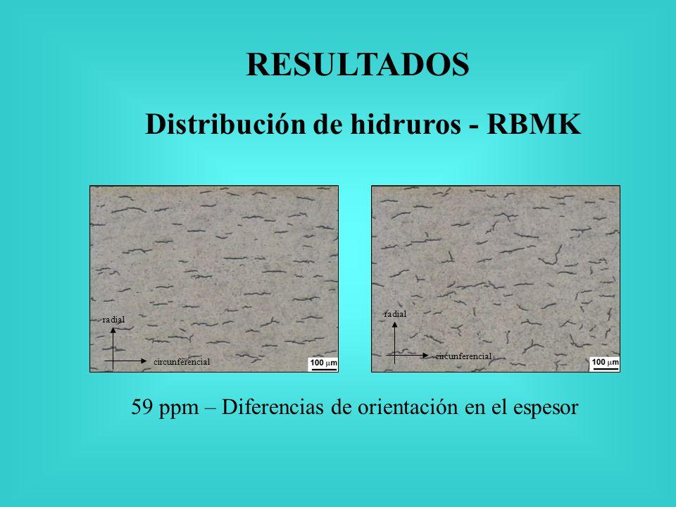 Distribución de hidruros - RBMK