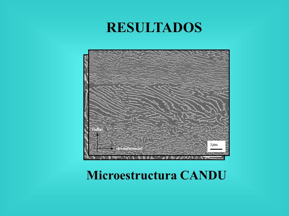 Microestructura CANDU