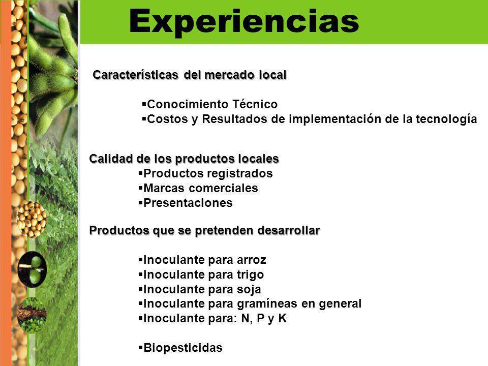 Experiencias Características del mercado local Conocimiento Técnico