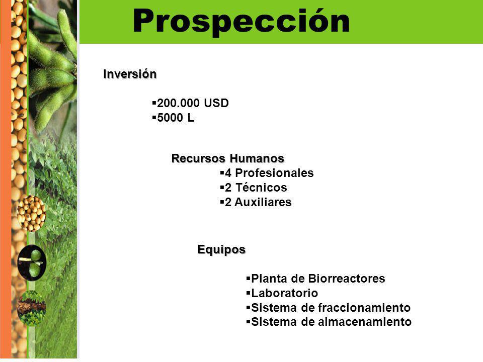 Prospección Inversión 200.000 USD 5000 L Recursos Humanos