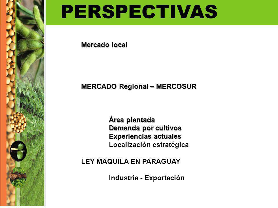PERSPECTIVAS Mercado local MERCADO Regional – MERCOSUR Área plantada