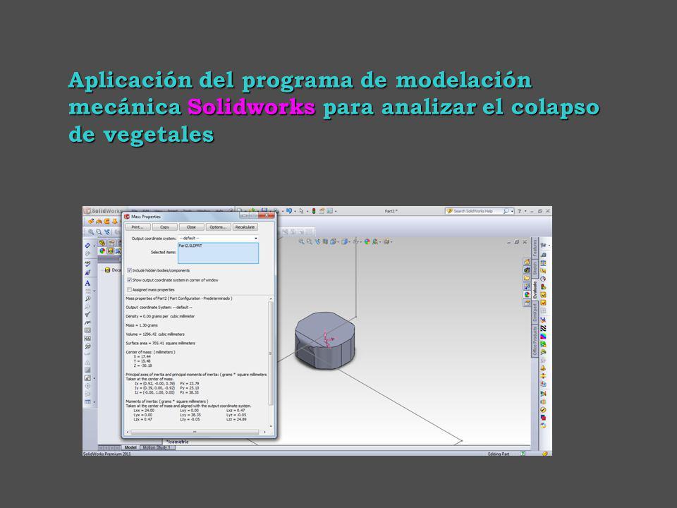 Aplicación del programa de modelación mecánica Solidworks para analizar el colapso de vegetales