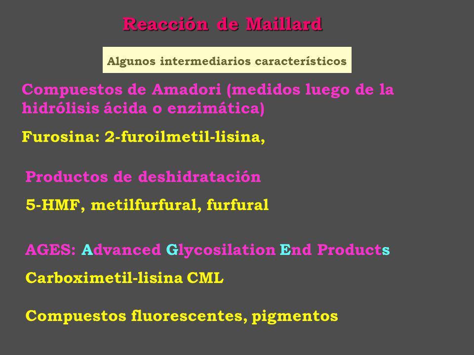 Reacción de Maillard Algunos intermediarios característicos. Compuestos de Amadori (medidos luego de la hidrólisis ácida o enzimática)
