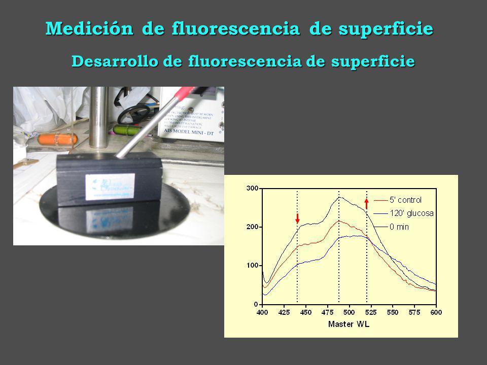 Desarrollo de fluorescencia de superficie