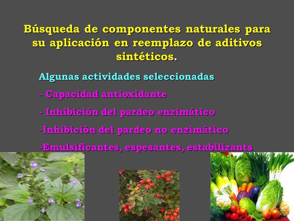 Búsqueda de componentes naturales para su aplicación en reemplazo de aditivos sintéticos.