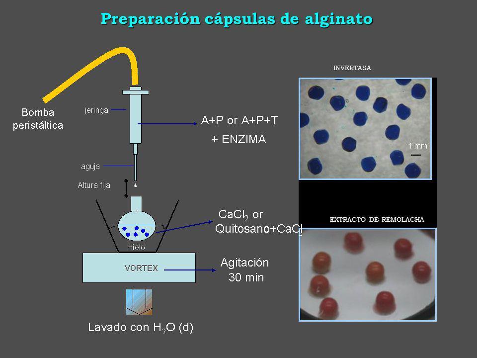 Preparación cápsulas de alginato