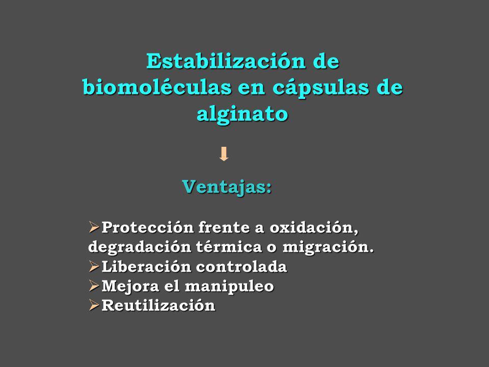 Estabilización de biomoléculas en cápsulas de alginato