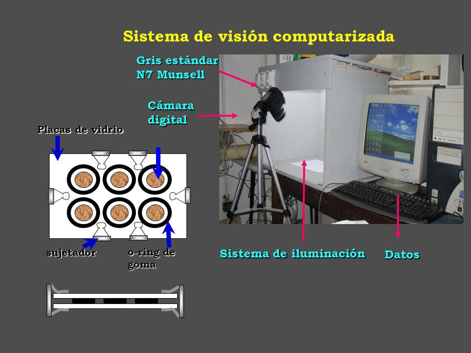 Sistema de visión computarizada