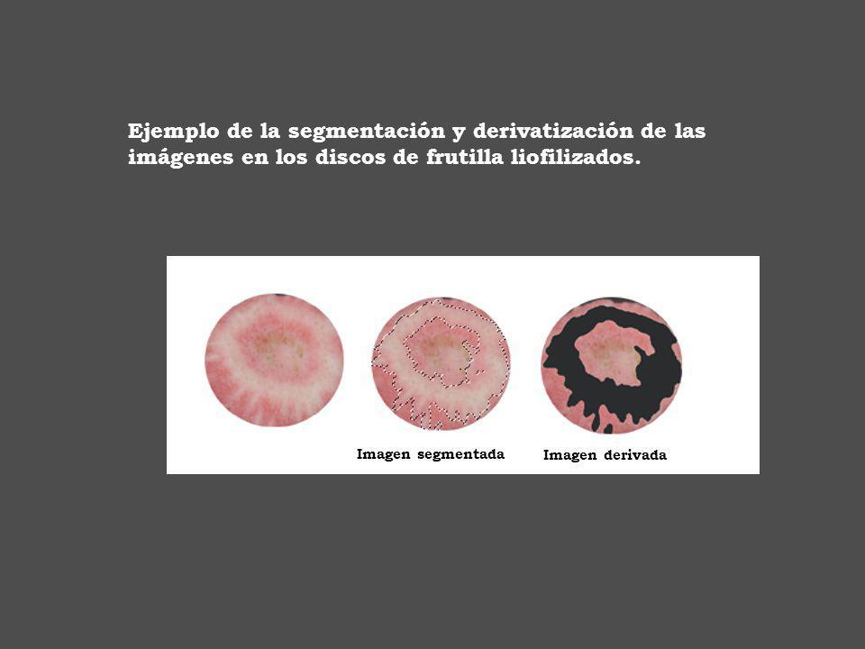 Ejemplo de la segmentación y derivatización de las imágenes en los discos de frutilla liofilizados.