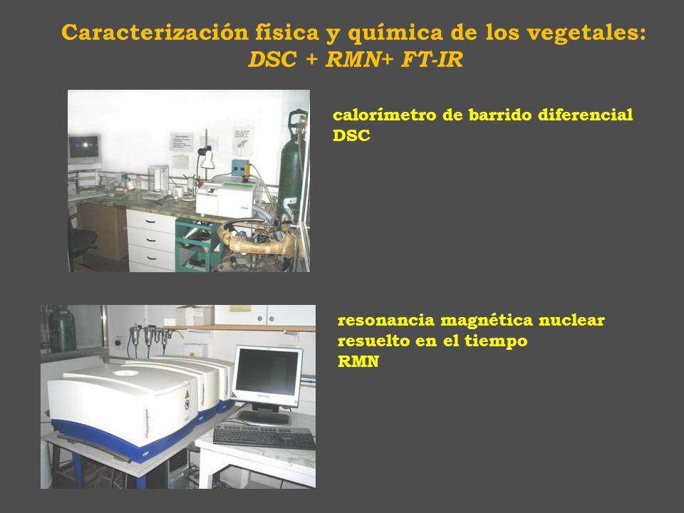 Caracterización física y química de los vegetales: