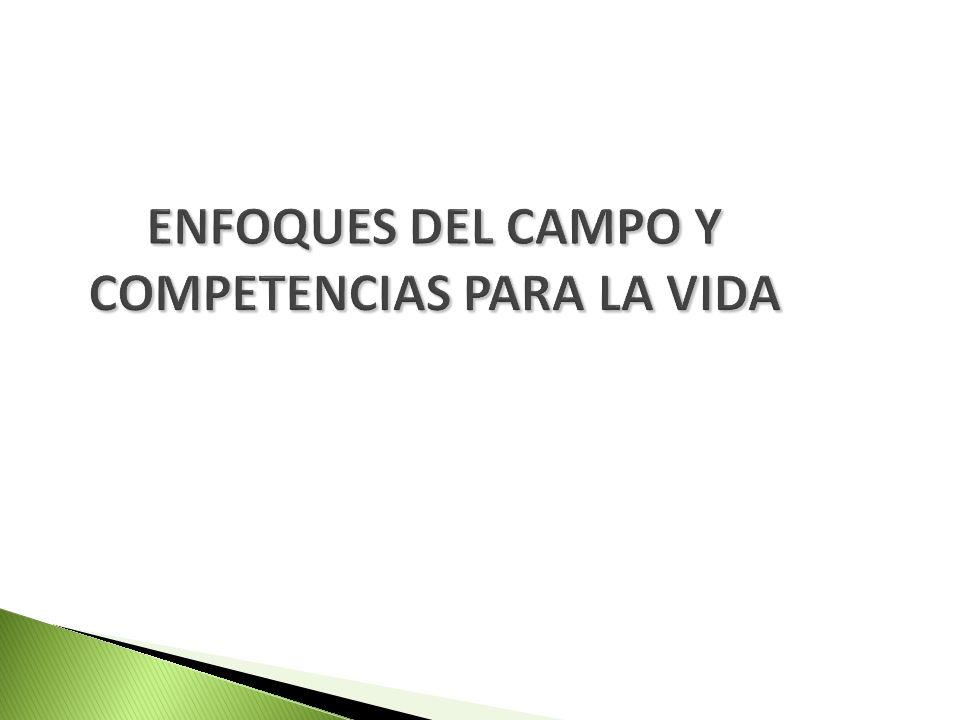 ENFOQUES DEL CAMPO Y COMPETENCIAS PARA LA VIDA