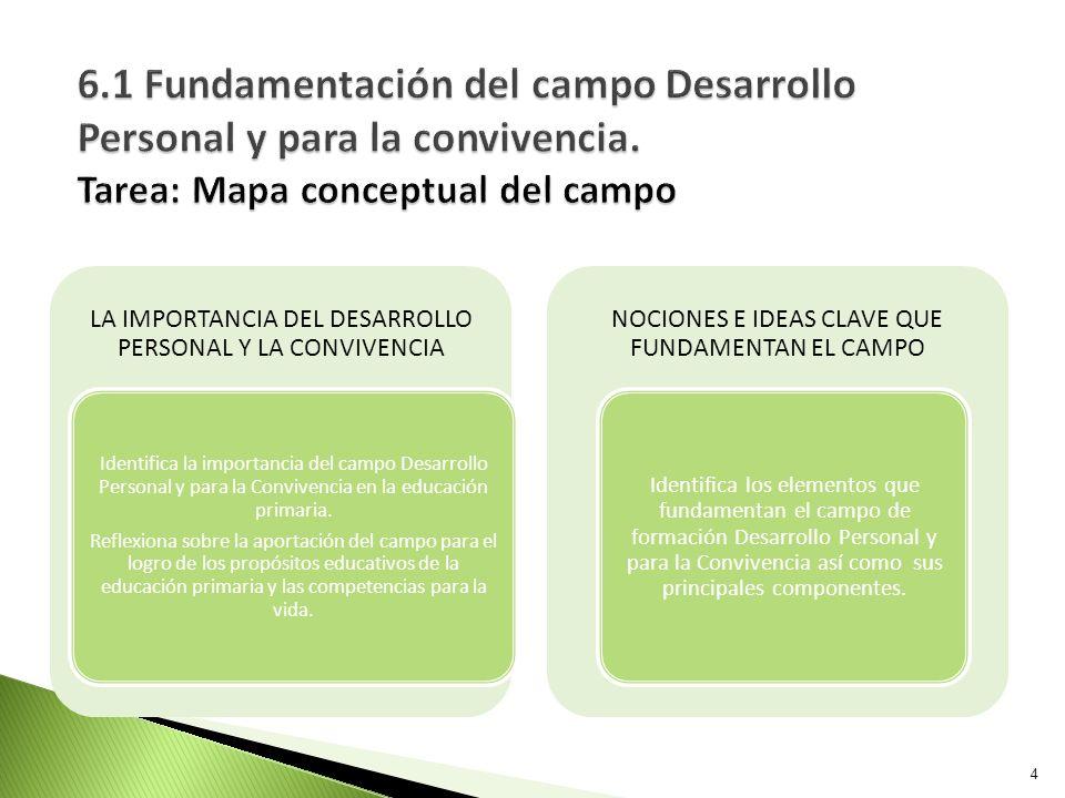 6.1 Fundamentación del campo Desarrollo Personal y para la convivencia. Tarea: Mapa conceptual del campo