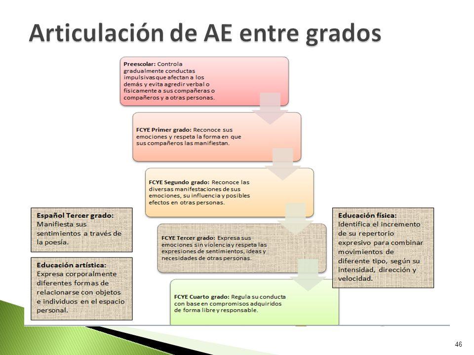 Articulación de AE entre grados
