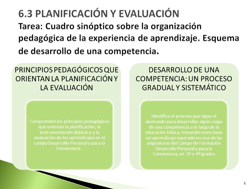 6.3 PLANIFICACIÓN Y EVALUACIÓN Tarea: Cuadro sinóptico sobre la organización pedagógica de la experiencia de aprendizaje. Esquema de desarrollo de una competencia.