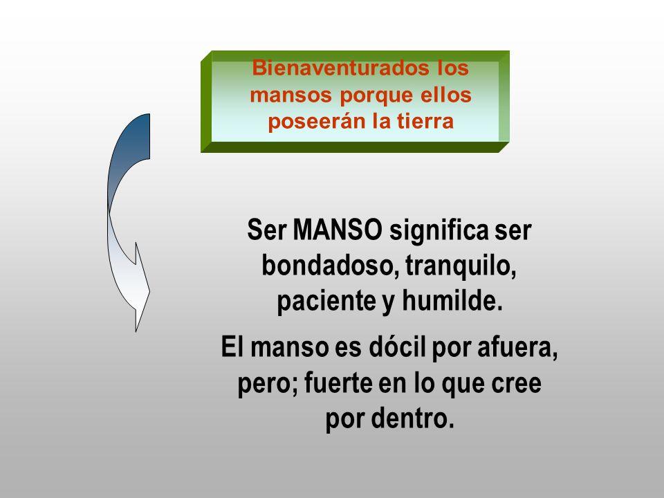 Ser MANSO significa ser bondadoso, tranquilo, paciente y humilde.