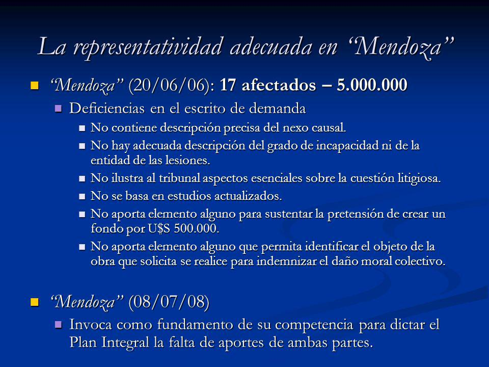 La representatividad adecuada en Mendoza