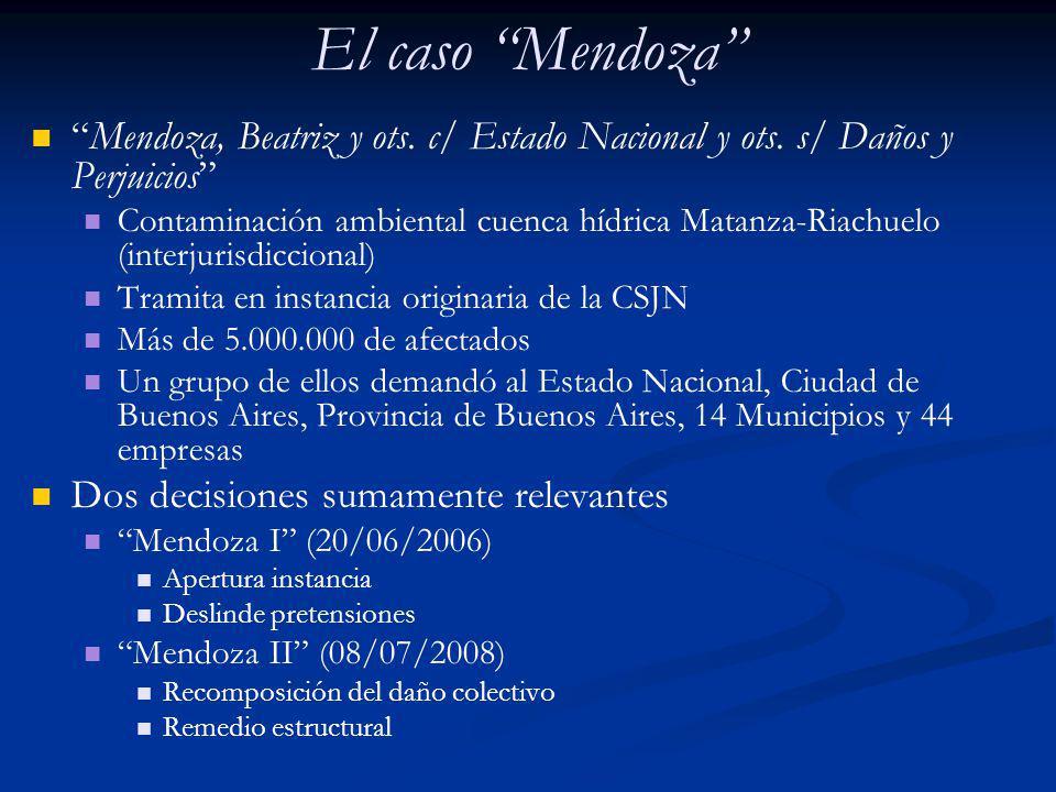 El caso Mendoza Mendoza, Beatriz y ots. c/ Estado Nacional y ots. s/ Daños y Perjuicios
