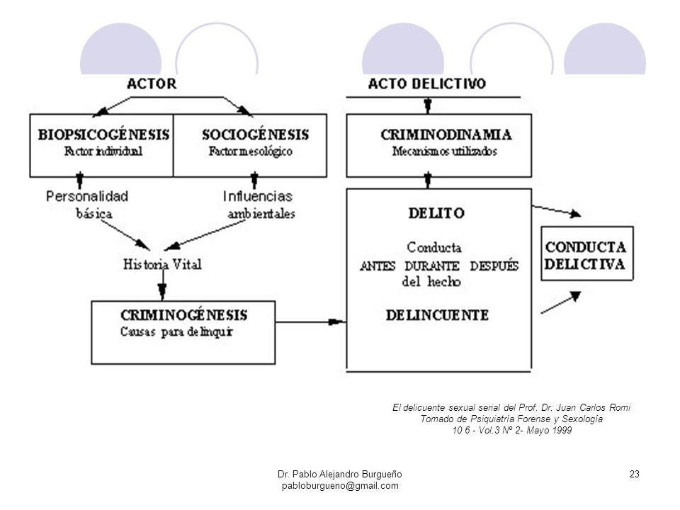 El delicuente sexual serial del Prof. Dr. Juan Carlos Romi