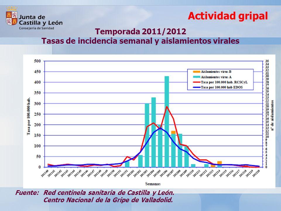 Temporada 2011/2012 Tasas de incidencia semanal y aislamientos virales