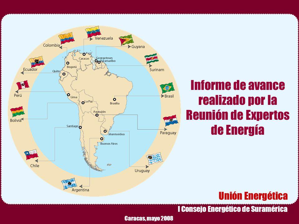 Informe de avance realizado por la Reunión de Expertos de Energía