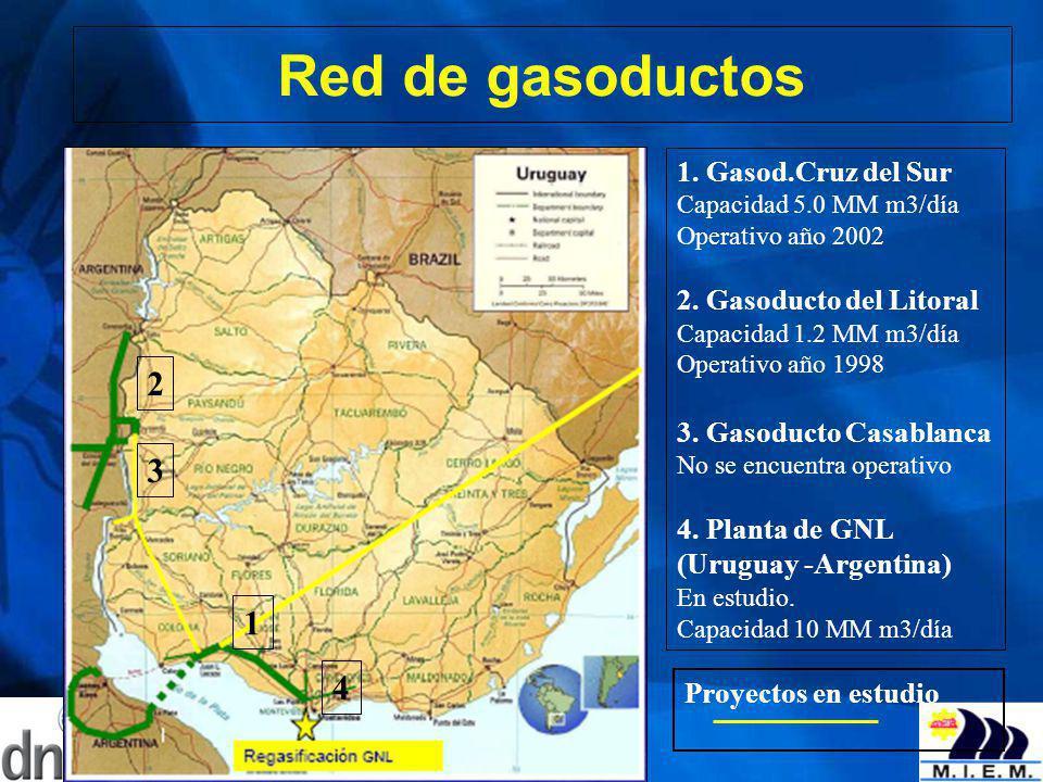 Red de gasoductos 2 3 1 4 1. Gasod.Cruz del Sur